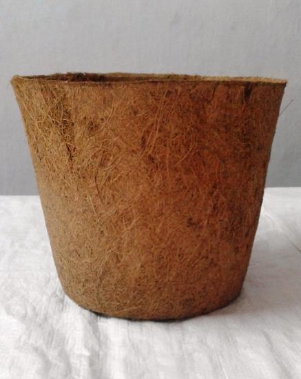 """8"""" Coir pot"""
